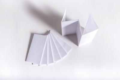Beipackzettel mit Parallelfalz - Mugler Masterpack GmbH